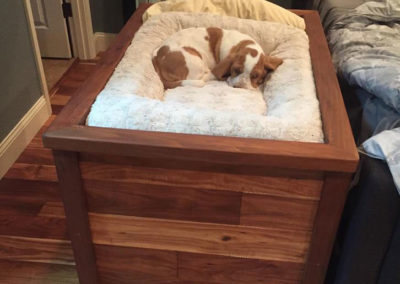Raised Dog Bed